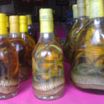 "Cobra ""Whisky"" in Laos"