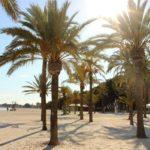 Mallorca, 11 Nächte für nur 419€