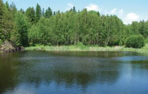 Ferienhaus Aneby Schweden, See mit Wald